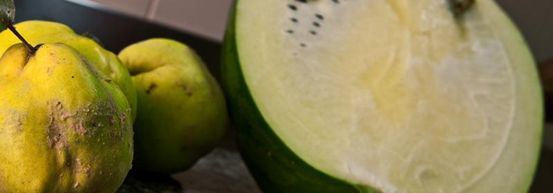 Agosto 2012: Un frutteto in dono
